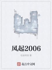风起2006
